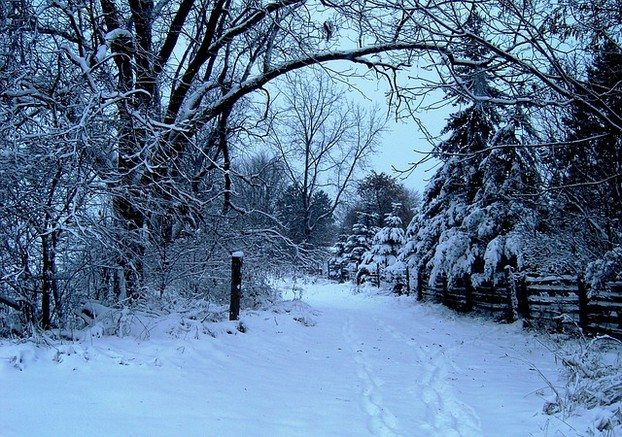 Weihnachten 2019 Schnee.Schnee An Weihnachten Wie Wird Das Wetter Im Dezember 2019