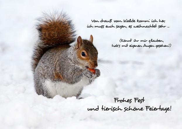 Weihnachtskarten festlich und individuell gestalten mit kostenlosen vorlagen - Niedliche weihnachtskarten ...