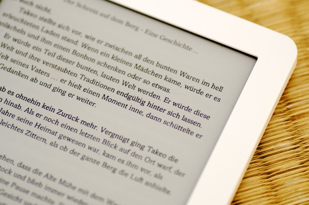 Display eines E-Book Readers