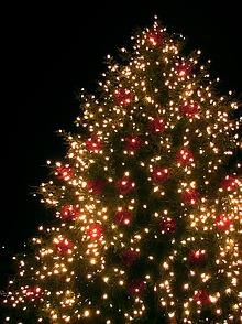 Led tannenbaum 4 varianten - Blinkender weihnachtsbaum ...