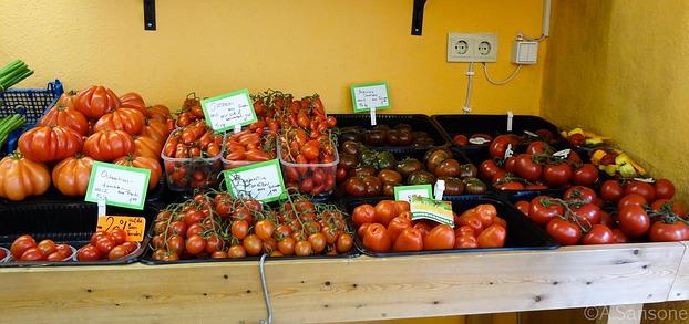 warum tomaten selber ziehen weil es besser schmeckt. Black Bedroom Furniture Sets. Home Design Ideas