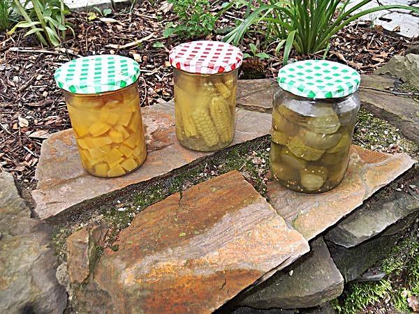 Garten tipps obst konservieren einmachen leckere rezepte for Moos konservieren