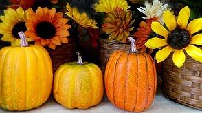 Halloween deko mit k rbis co - Herbstdeko kurbis ...