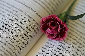 Gedichte Und Verse Zur Konfirmation Und Kommunion