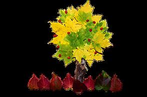 Wie Bastelt Man Eine Collage Aus Herbstblättern