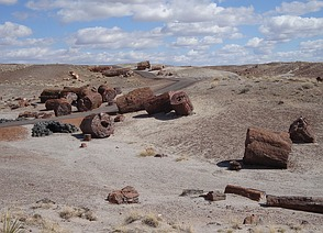 Petrified Forest National Park in ...