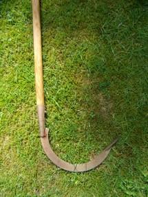 Faul Sein Im Garten Und Trotzdem 252 Ppig Ernten Der