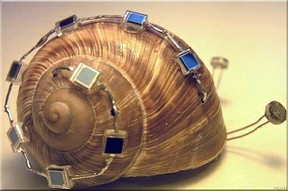 Snail-Bot - solarenergiegespeister B.E.A.M.-Roboter