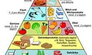 ernährung fettabbau und muskelaufbau