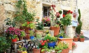 Garten Provence garten die meisterwerke des vaucluse in der provence