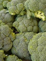 broccoli oder brokkoli richtig einkaufen lagern pflanzen zubereiten und essen. Black Bedroom Furniture Sets. Home Design Ideas