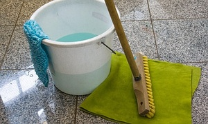 haushalt tipps biologisches putzen mit backpulver essig und zitronen. Black Bedroom Furniture Sets. Home Design Ideas