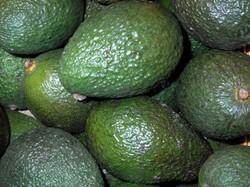 avocado das avocado l ist eine vitaminbombe f r die naturkosmetik. Black Bedroom Furniture Sets. Home Design Ideas