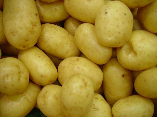kartoffel cilena