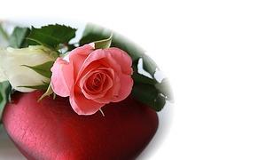 Valentinstag   Sagu0027s Durch Die Blume