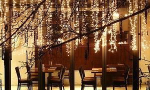 led lichterketten als weihnachtsbeleuchtung. Black Bedroom Furniture Sets. Home Design Ideas