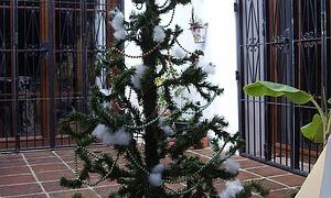 weihnachten in spanien traditionelles weihnachtsgeb ck. Black Bedroom Furniture Sets. Home Design Ideas
