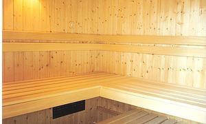 schwimmteiche der kologische trend im garten. Black Bedroom Furniture Sets. Home Design Ideas