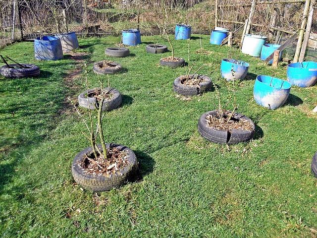 Garten gestalten mit wenig geld gartengestaltung f r for Gartenidee beet